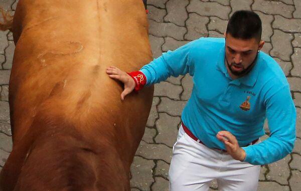 Účastník festivalu San Fermín se dotýká býka  - Sputnik Česká republika
