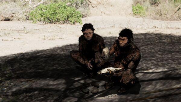 Homo erectus - Sputnik Česká republika