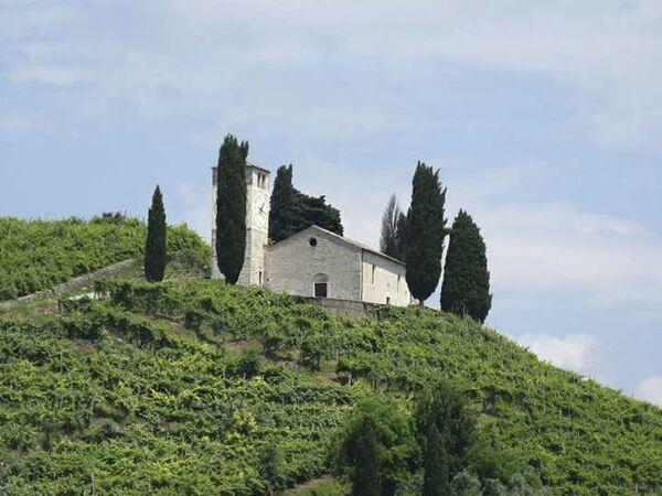 Kostel svatého Vigiliusa a vinice, kde se pěstuje Prosecco, Itálie - Sputnik Česká republika