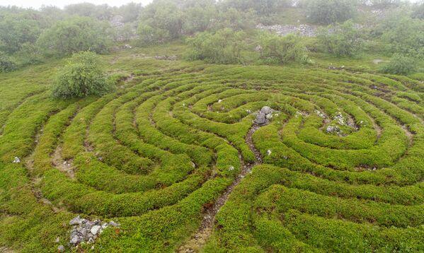 Umělé labyrinty na Velkém zaječím ostrově - Sputnik Česká republika