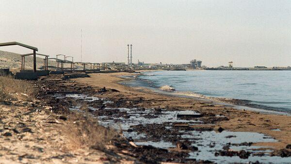 Ropa na pláži - Sputnik Česká republika