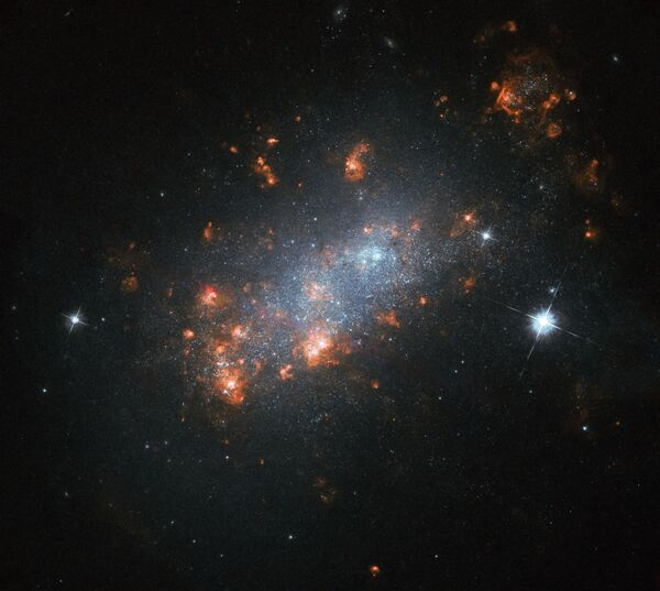 Galaxie NGC 1156 v souhvězdí Berana - Sputnik Česká republika
