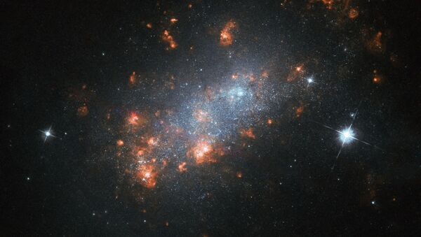 Galaxie NGC 1156  - Sputnik Česká republika