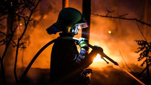 Lesní požáry zuří ve světě. Přežijeme toto léto? - Sputnik Česká republika