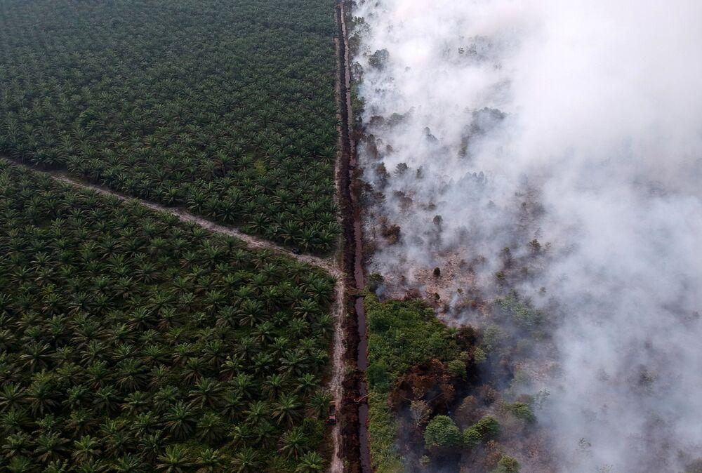 Pohled shora na hořící plantáže v Indonézii.