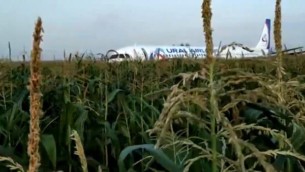 Nedaleko moskevského letiště Žukovskij nouzově přistál Airbus A321 - Sputnik Česká republika