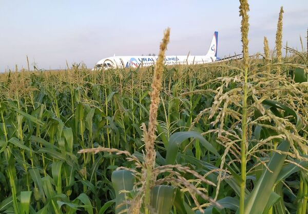 Následky nouzového přistání Airbusu A321 nedaleko moskevského letiště Žukovskij. - Sputnik Česká republika