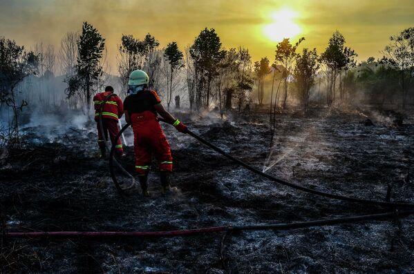 Hašení lesních požárů v Sumatře, Indonésie. - Sputnik Česká republika
