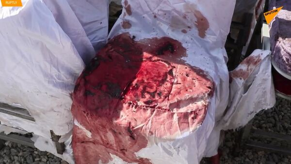 Krvavá svatba v Kábulu: 63 lidí zemřelo, 182 bylo zraněno - Sputnik Česká republika