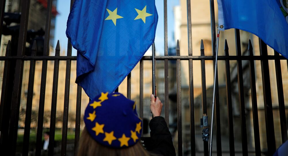 Protest proti brexitu před britským parlamentem v Londýně