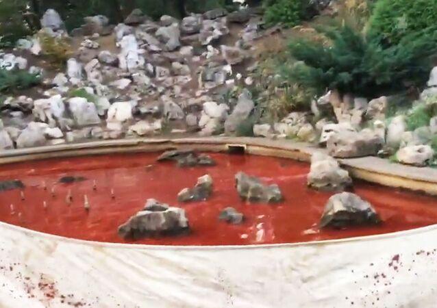 V Sofii na znamení protestu proti nastolení komunistického režimu nabarvili fontánu krvavě rudou barvou.