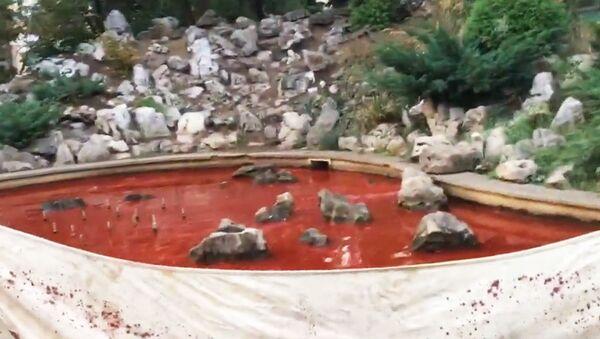 V Sofii na znamení protestu proti nastolení komunistického režimu nabarvili fontánu krvavě rudou barvou - Sputnik Česká republika