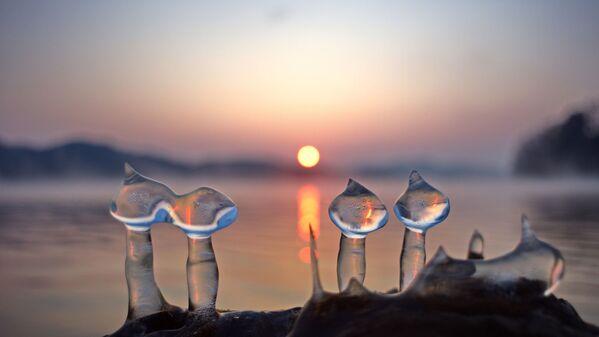 Fotografie Glazes on Daecheong Lake (Seok-Heon Yoon). - Sputnik Česká republika