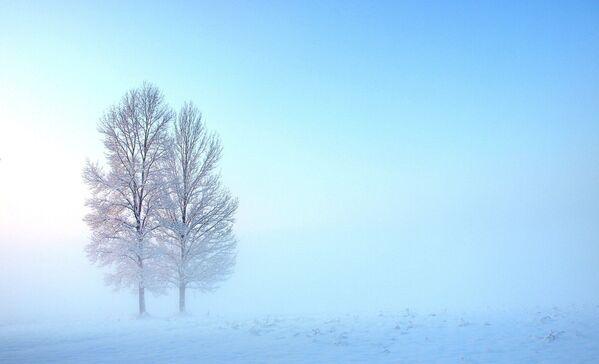 Fotografie Frozen (Nataša Šafar) - Sputnik Česká republika