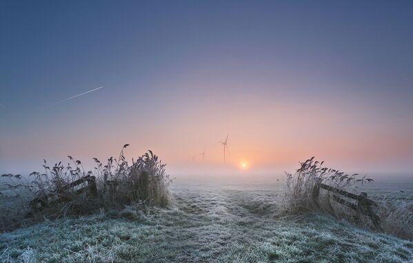 Fotografie Frosty Morning (Anna Zuidema) - Sputnik Česká republika