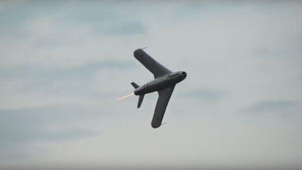 Svůj mezi cizími. V USA byl natočen let legendárního MiG-17  - Sputnik Česká republika