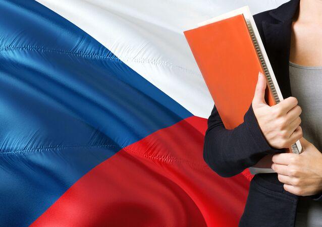 Česká vlajka. Ilustrační foto