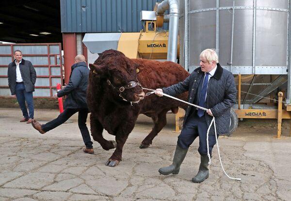Britský premiér Boris Johnson na návštěvě farmy ve Skotsku. - Sputnik Česká republika