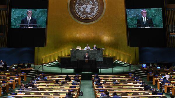 Vystoupení českého premiéra Andreje Babiše na Valném shromáždění v OSN - Sputnik Česká republika