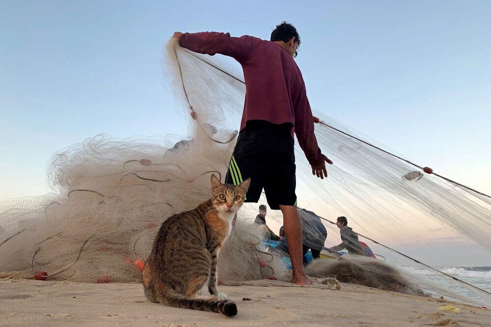 Kočka a palestinský rybář na pláži v severním pásmu Gazy