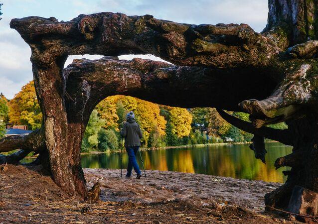 Severská chůze u jezera Suzdal v Petrohradě