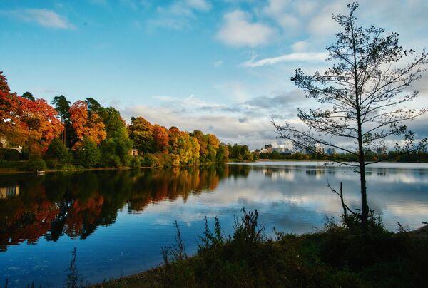Suzdalská jezera v Petrohradě - Sputnik Česká republika