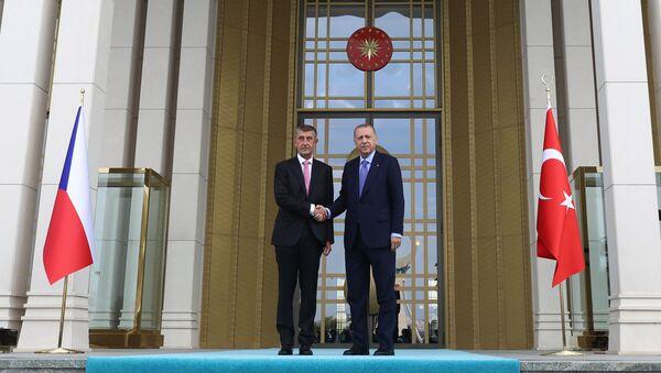 Český premiér Andrej Babiš a turecký prezident Recep Tayyip Erdogan v Ankaře (3. 9. 2019) - Sputnik Česká republika