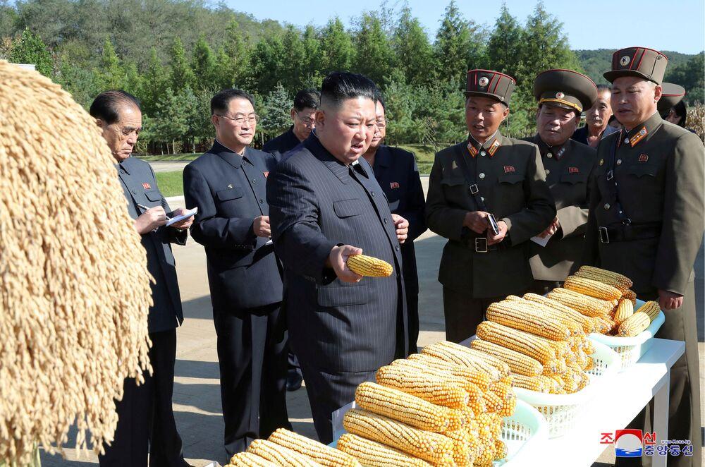Severokorejský vůdce Kim Jong-un navštěvuje farmu, KLDR