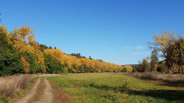 Krajina. Ilustrační foto - Sputnik Česká republika