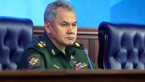 Ruský ministr obrany Sergej Šojgu - Sputnik Česká republika