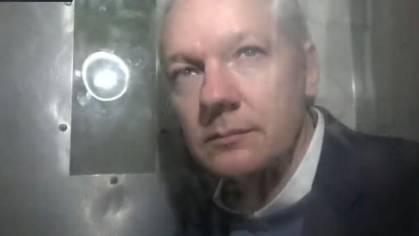 Video: Exkluzivně. První záběry Juliana Assange z vězeňské cely v Londýně. Jak vypadá teď?  - Sputnik Česká republika