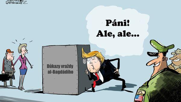 Karikatura Temné tajemství - Sputnik Česká republika
