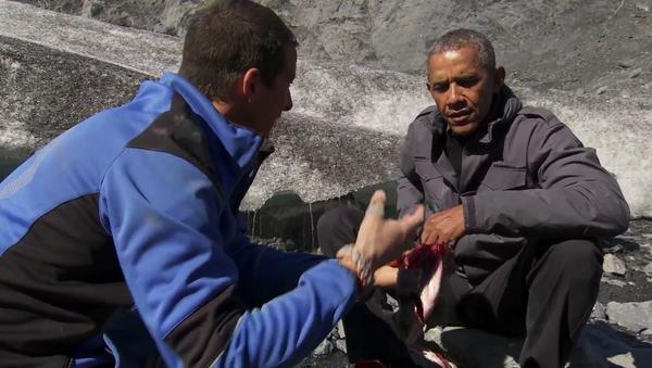 Nutné k přežití: Barack Obama a Bear Grylls uvařili rybu v divočině - Sputnik Česká republika