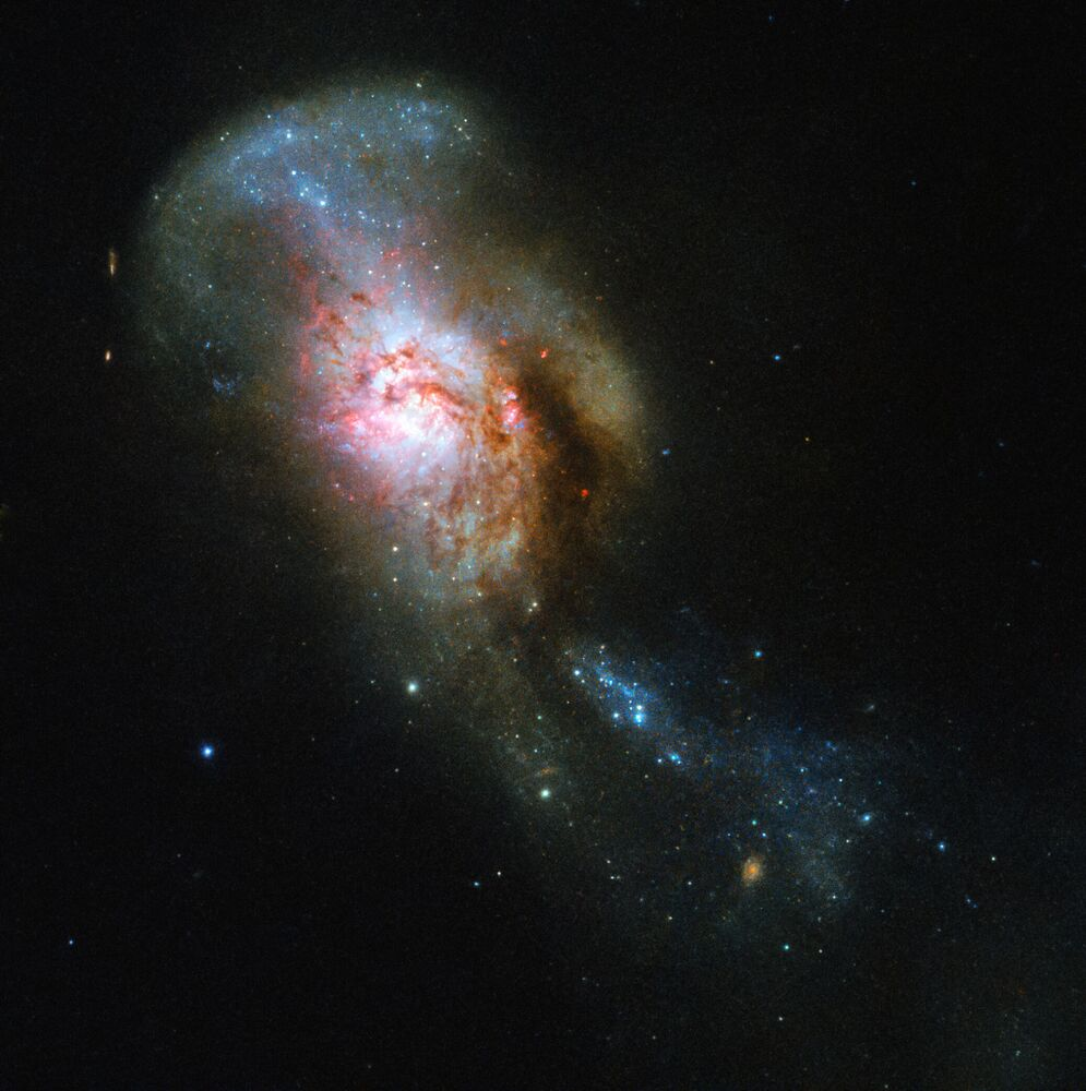 Teleskop Hubble vyfotil těleso NGC 4194 Splynutí medúzy.