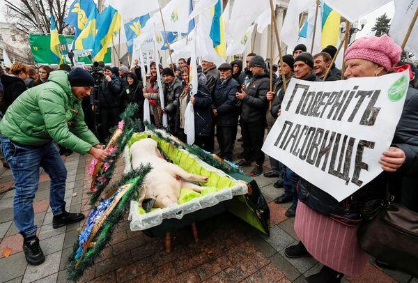 Protesty v Bolívii, Chile a na Ukrajině. Čím dalším se nám minulý týden vryl do paměti? - Sputnik Česká republika