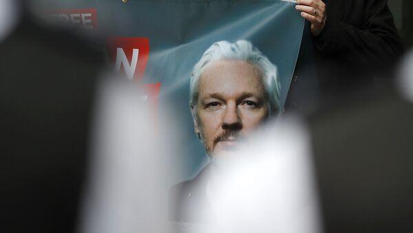 Plakáty na demonstraci na podporu zakladatele WikiLeaks Juliana Assange v Londýně (14. 6. 2019) - Sputnik Česká republika
