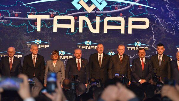 Ceremonie spuštění Transanatolského plynovodu (TANAP)  - Sputnik Česká republika
