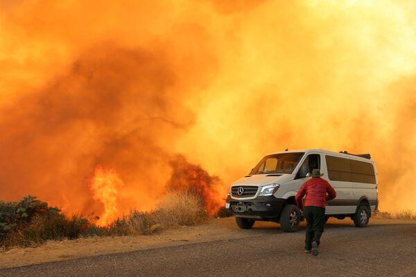 Lesní požáry v Kalifornii - Sputnik Česká republika