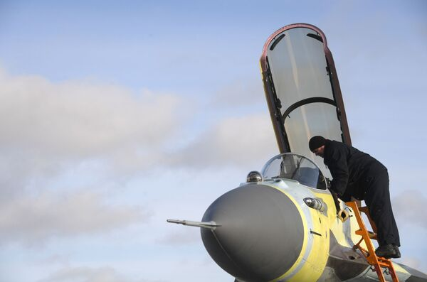 Zaměstnanec Luchovického leteckého závodu během předletové přípravy MiG - Sputnik Česká republika