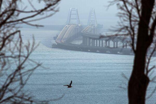 Вид на Крымский мост с Крымского полуострова - Sputnik Česká republika