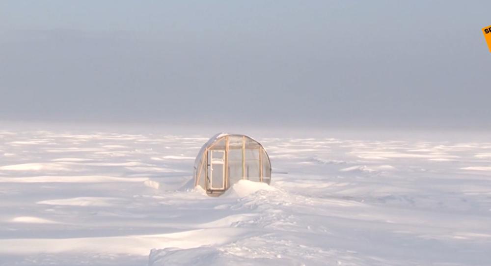 Video: To vás ohromí! Ruská žena hraje šachy každý den v ledové vodě v díře v ledu