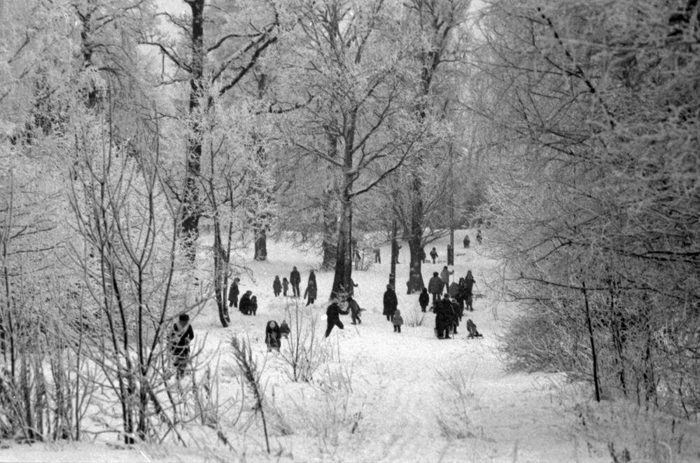 Obyvatelé na procházce v zimním parku