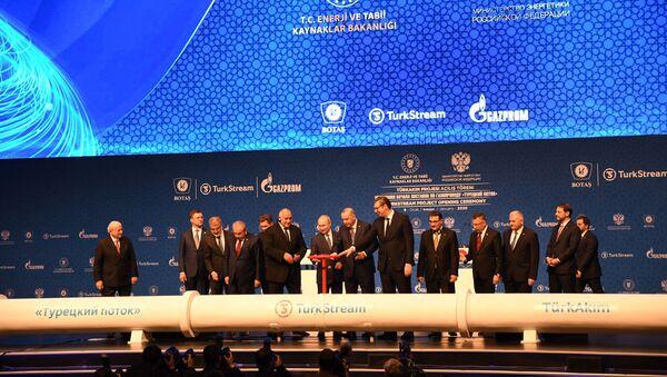 Slavnostní uvedení plynovodu Turecký proud do provozu. Istanbul. 8. ledna 2020 - Sputnik Česká republika