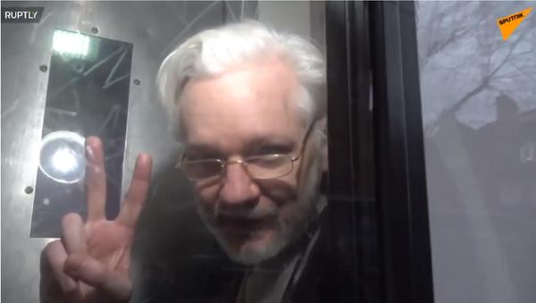 Julian Assange před londýnským soudem, 13. ledna 2020 - Sputnik Česká republika