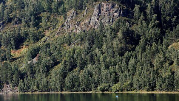Les na Sibiři. Ilustrační foto - Sputnik Česká republika