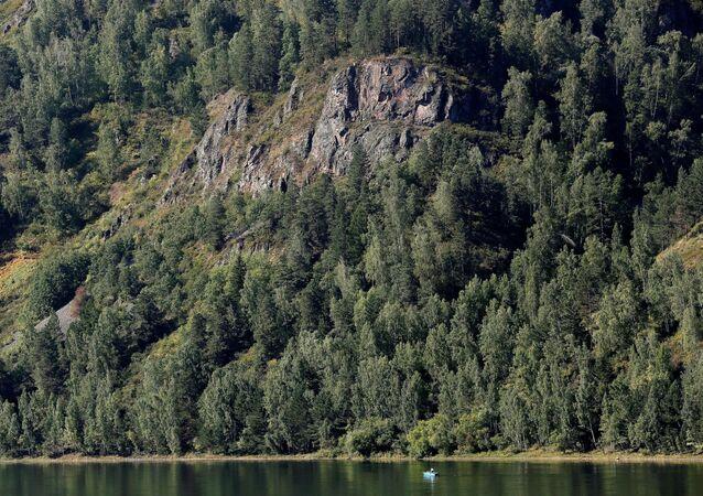 Les na Sibiři. Ilustrační foto
