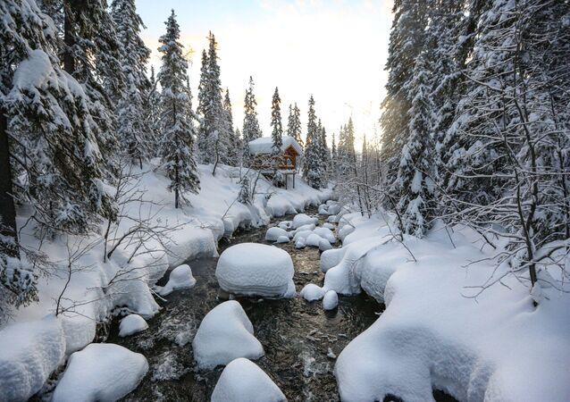 Řeka v Laponské přírodní rezervaci