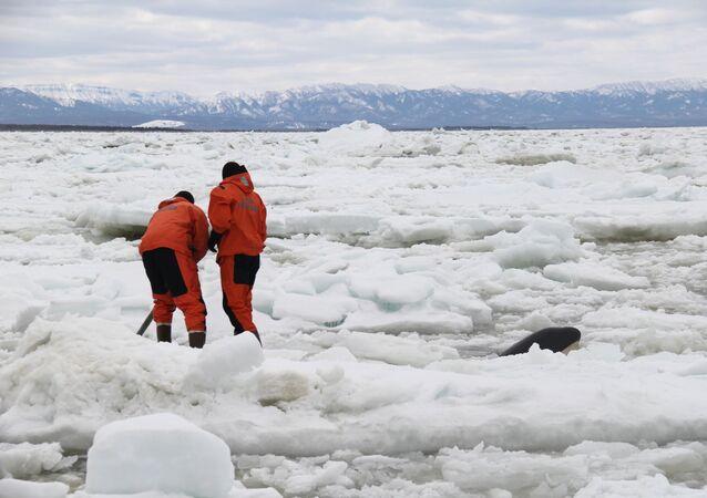 Operace ministerstva pro mimořádné události na Sachalinu. Illustrační foto