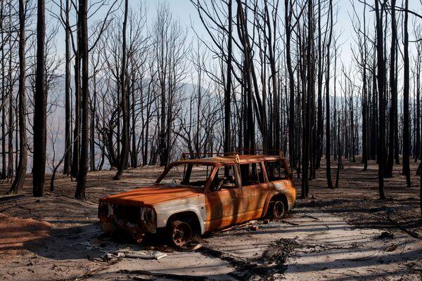 Spálené auto v Kangaroo Valley v Austrálii po lesních požárech - Sputnik Česká republika