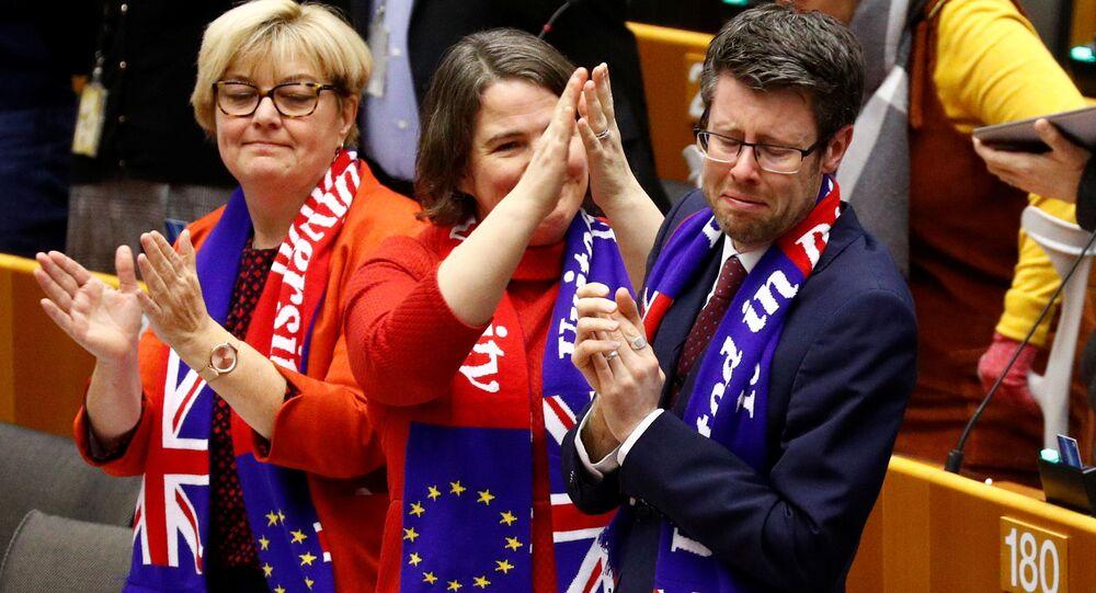 Zástupci Velké Británie v Evropském parlamentu 29. ledna 2020